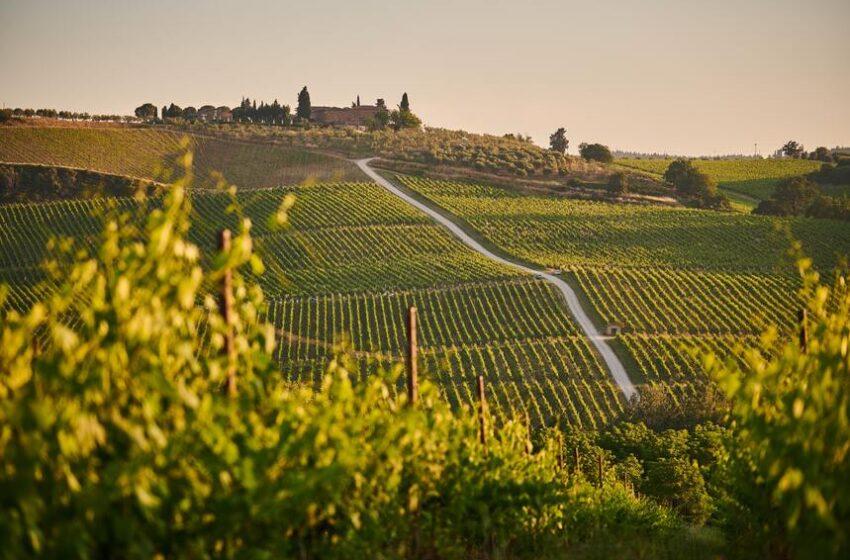 Torino e il Piemonte si candidano come Capitali del Food